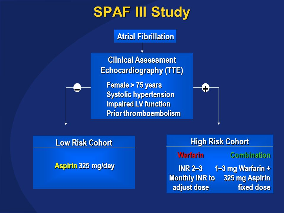 SPAF III Study Atrial Fibrillation Clinical Assessment Echocardiography (TTE) Female > 75 years Systolic hypertension Systolic hypertension Impaired LV function Impaired LV function Prior thromboembolism Prior thromboembolism Low Risk Cohort Aspirin 325 mg/day Aspirin 325 mg/day High Risk Cohort WarfarinCombination INR 2–31–3 mg Warfarin + Monthly INR to325 mg Aspirin adjust dosefixed dose – +