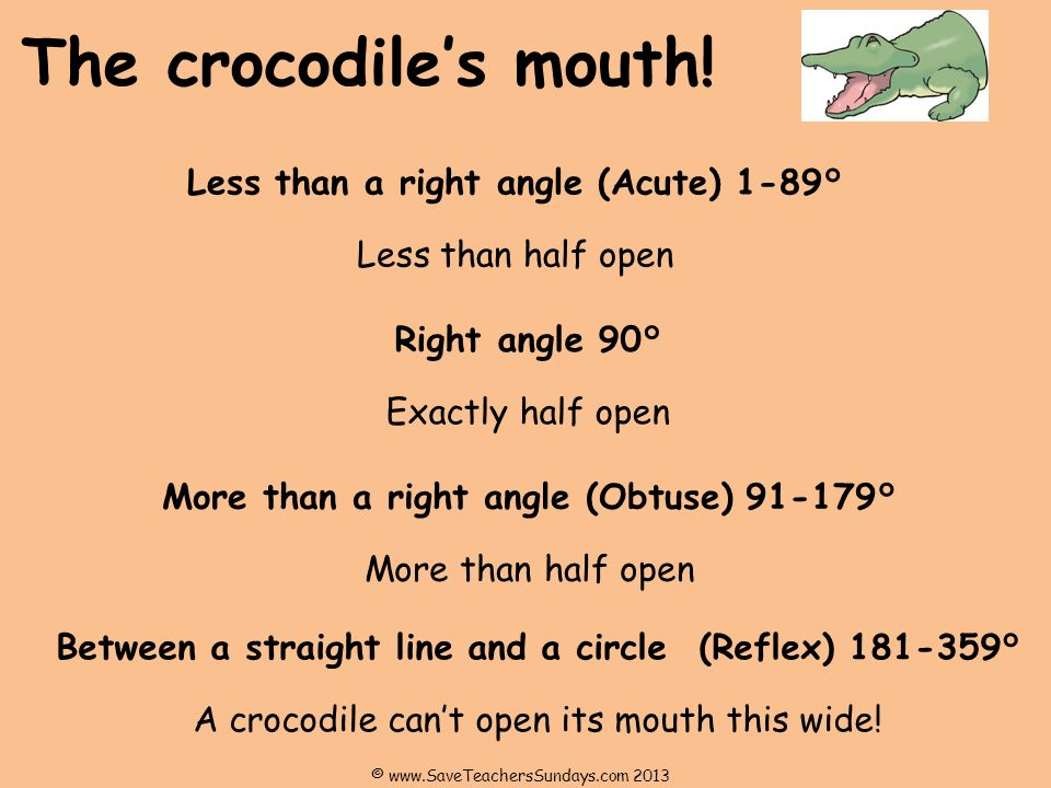 The crocodiles mouth.
