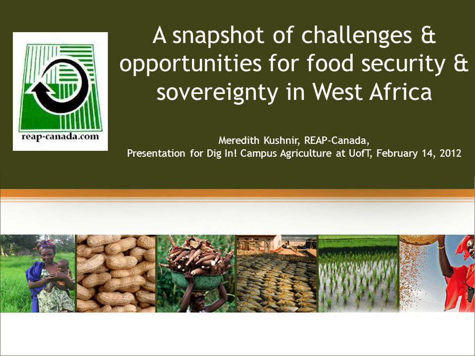 Linking A snapshot of challenges & opportunities for food security & sovereignty in West Africa Meredith Kushnir, REAP-Canada, Presentation for Dig In.