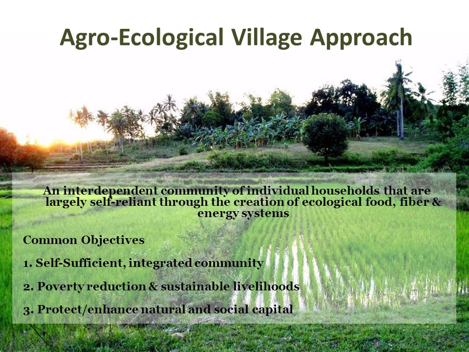 Agro-Ecological Village Approach An interdependent community of individual households that are largely self-reliant through the creation of ecological food, fiber & energy systems Common Objectives 1.