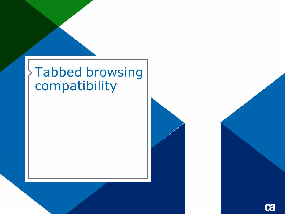 Tabbed browsing compatibility Title text for Title or Divider pages should be either 40 pt for short titles /28 pt for subtitles or 32 pts for longer titles /24 pt for subtitles No DATE on divider pages.
