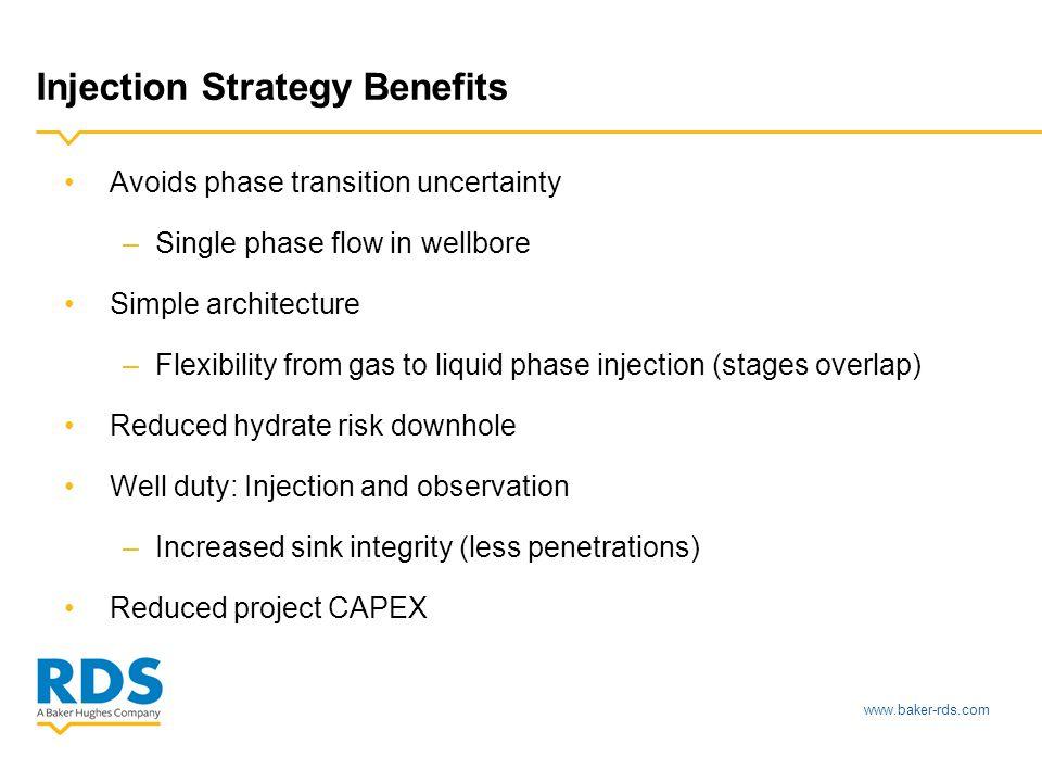 www.baker-rds.com Injection Strategy Benefits Avoids phase transition uncertainty –Single phase flow in wellbore Simple architecture –Flexibility from gas to liquid phase injection (stages overlap) Reduced hydrate risk downhole Well duty: Injection and observation –Increased sink integrity (less penetrations) Reduced project CAPEX
