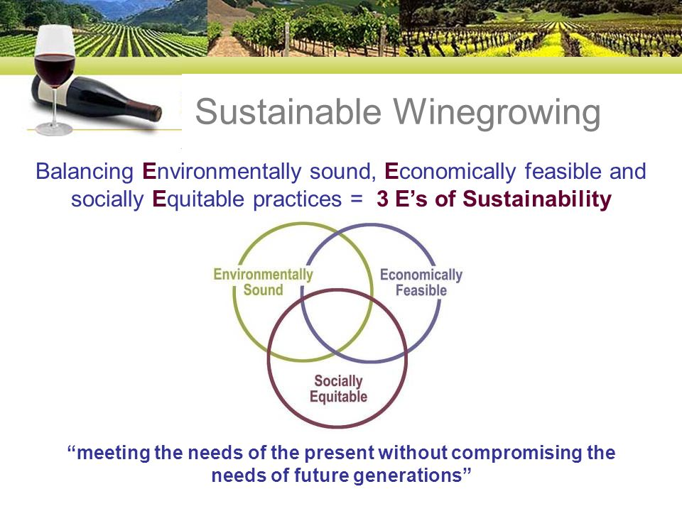 Sustainable Winegrowing Balancing Environmentally sound, Economically feasible and socially Equitable practices = 3 Es of Sustainability meeting the needs of the present without compromising the needs of future generations