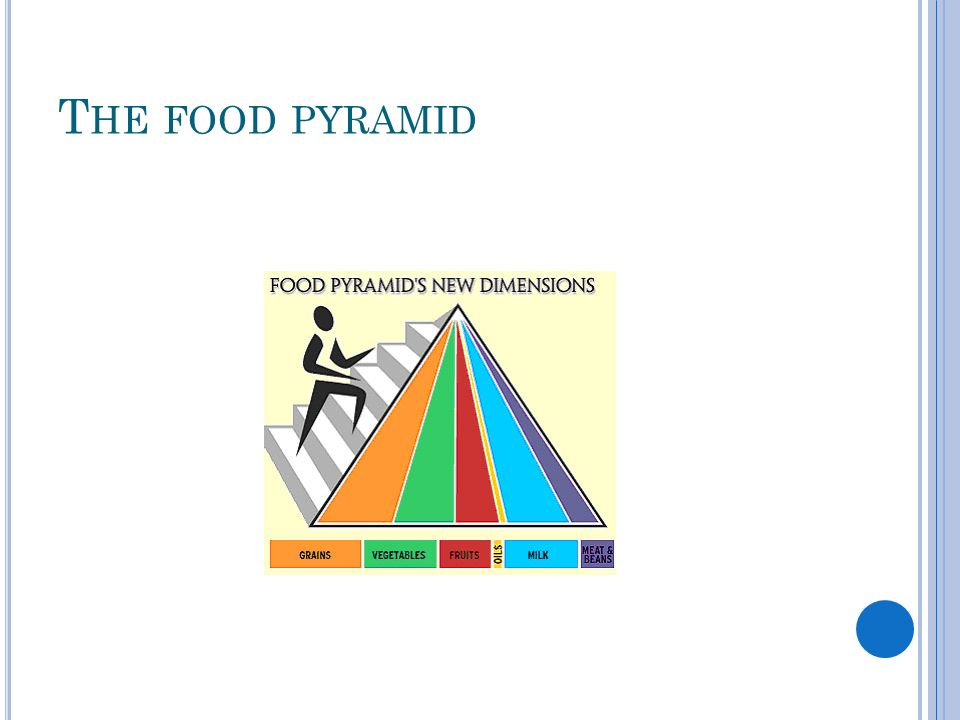 T HE FOOD PYRAMID