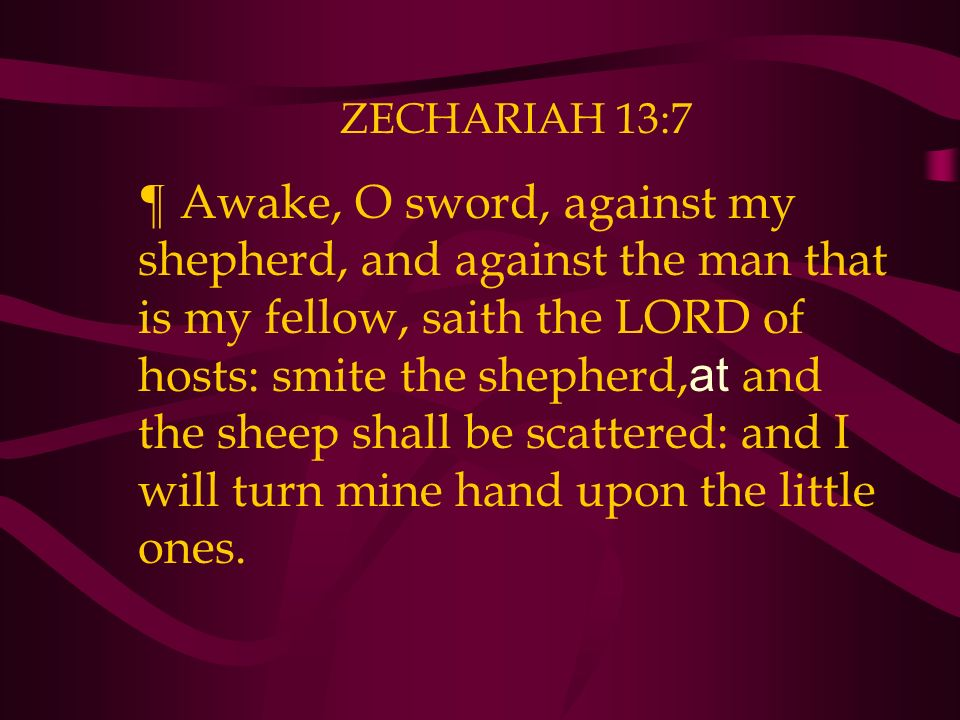 ZECHARIAH 13:7 ¶ Awake, O sword, against my shepherd, and against the man that is my fellow, saith the LORD of hosts: smite the shepherd, at and the sheep shall be scattered: and I will turn mine hand upon the little ones.