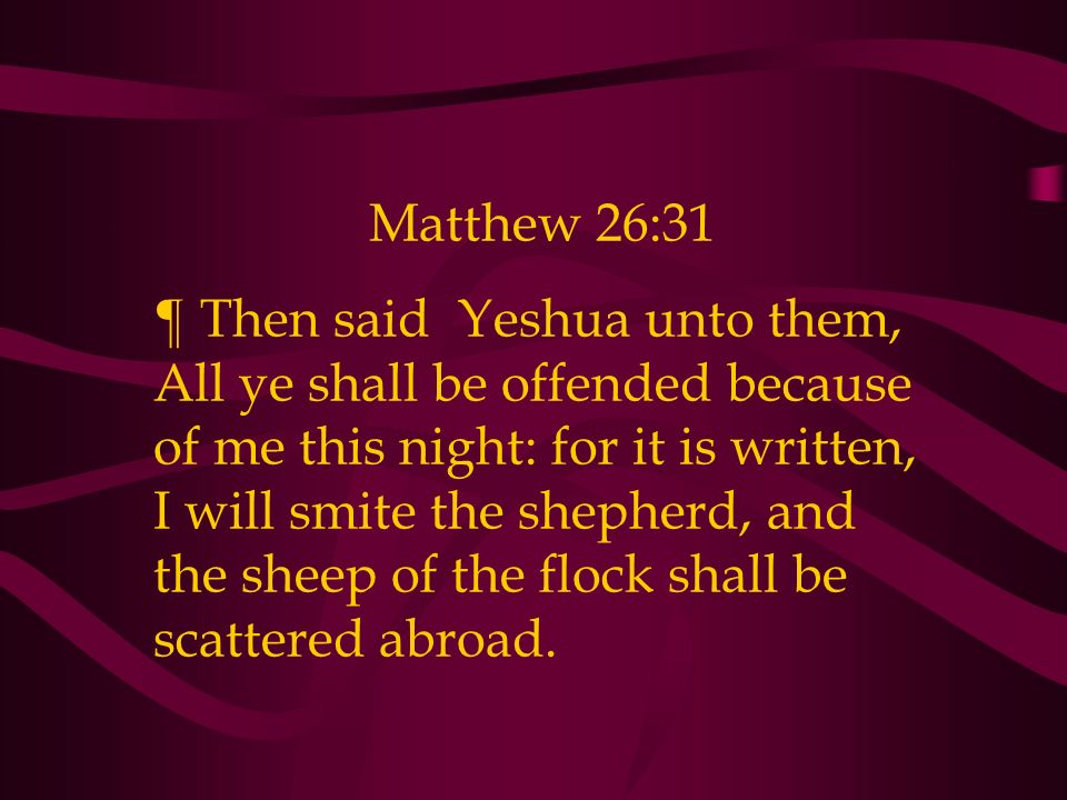 Matthew 26:31 ¶ Then said Yeshua unto them, All ye shall be offended because of me this night: for it is written, I will smite the shepherd, and the sheep of the flock shall be scattered abroad.