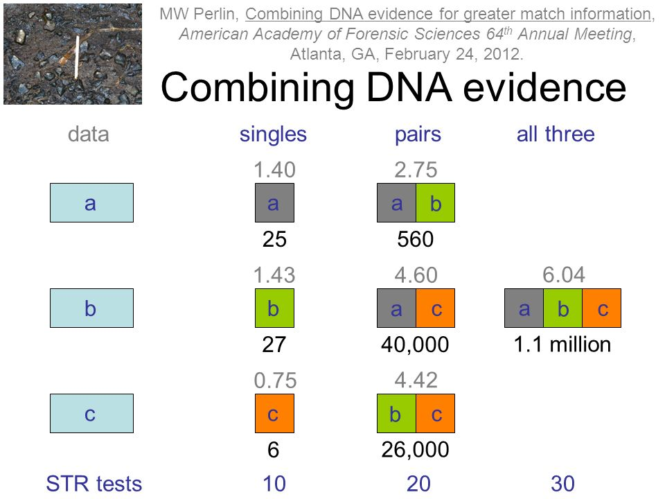 Combining DNA evidence a b c a b c a b a c singlespairsall threedata 102030 b c a b c 1.1 million 6.04 STR tests 40,000 4.60 26,000 4.42 560 2.75 25 1.40 27 1.43 6 0.75 MW Perlin, Combining DNA evidence for greater match information, American Academy of Forensic Sciences 64 th Annual Meeting, Atlanta, GA, February 24, 2012.
