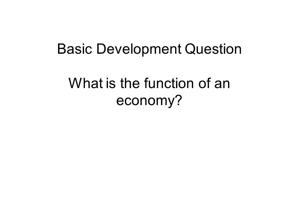 Basic Development Question What is the function of an economy