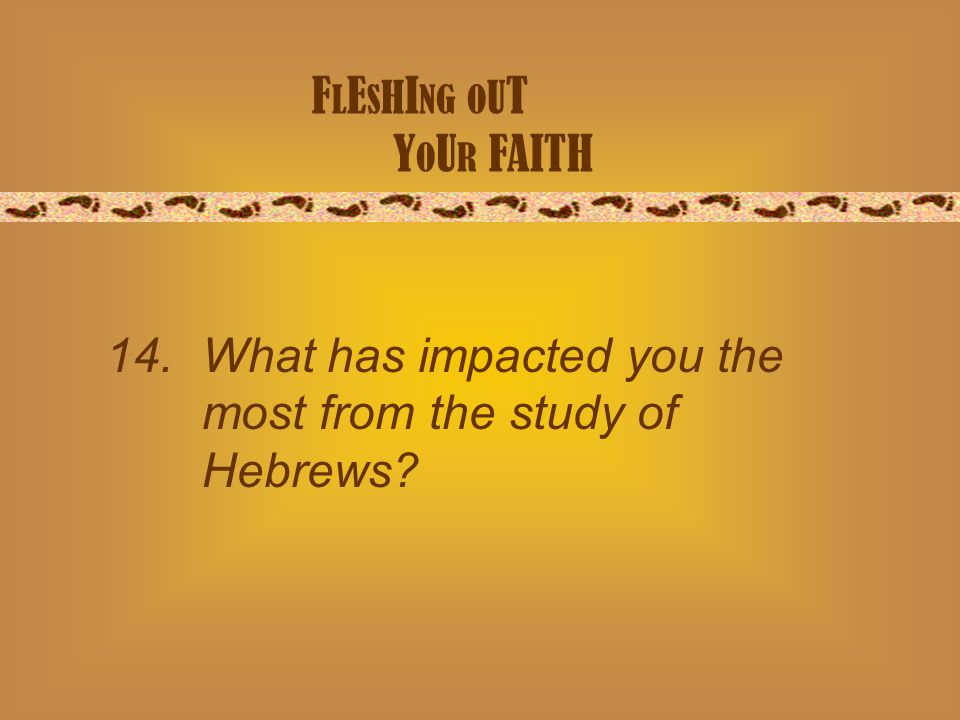 F L E S H I NG O U T Y O U R FAITH 14. What has impacted you the most from the study of Hebrews