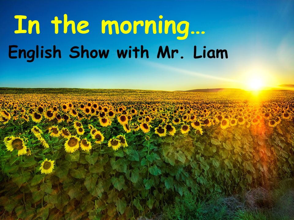 In the morning… English Show with Mr. Liam