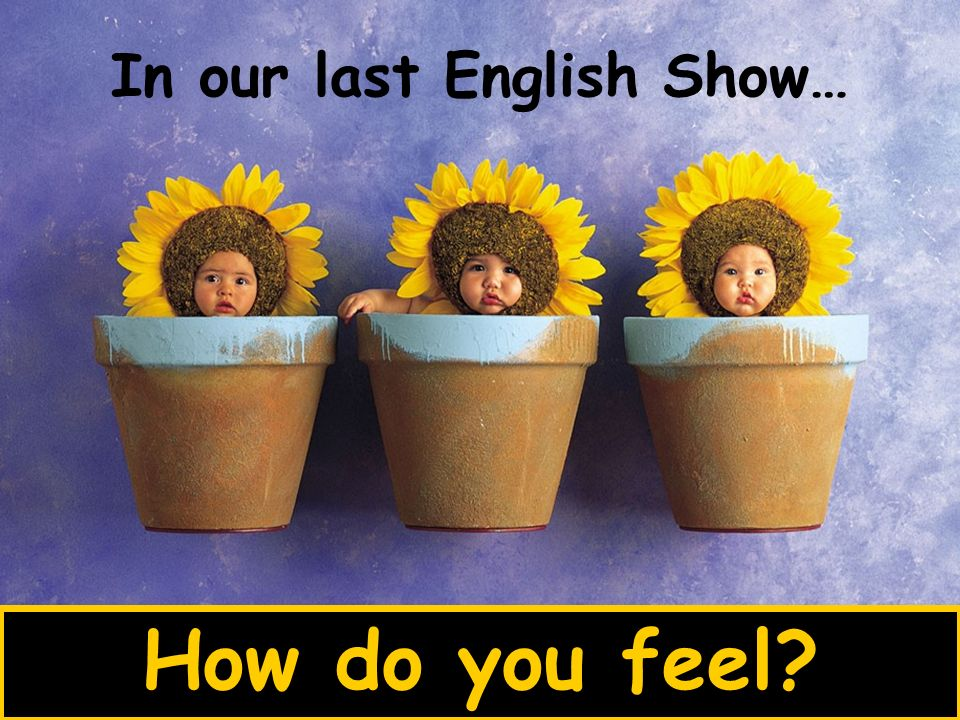 In our last English Show… How do you feel