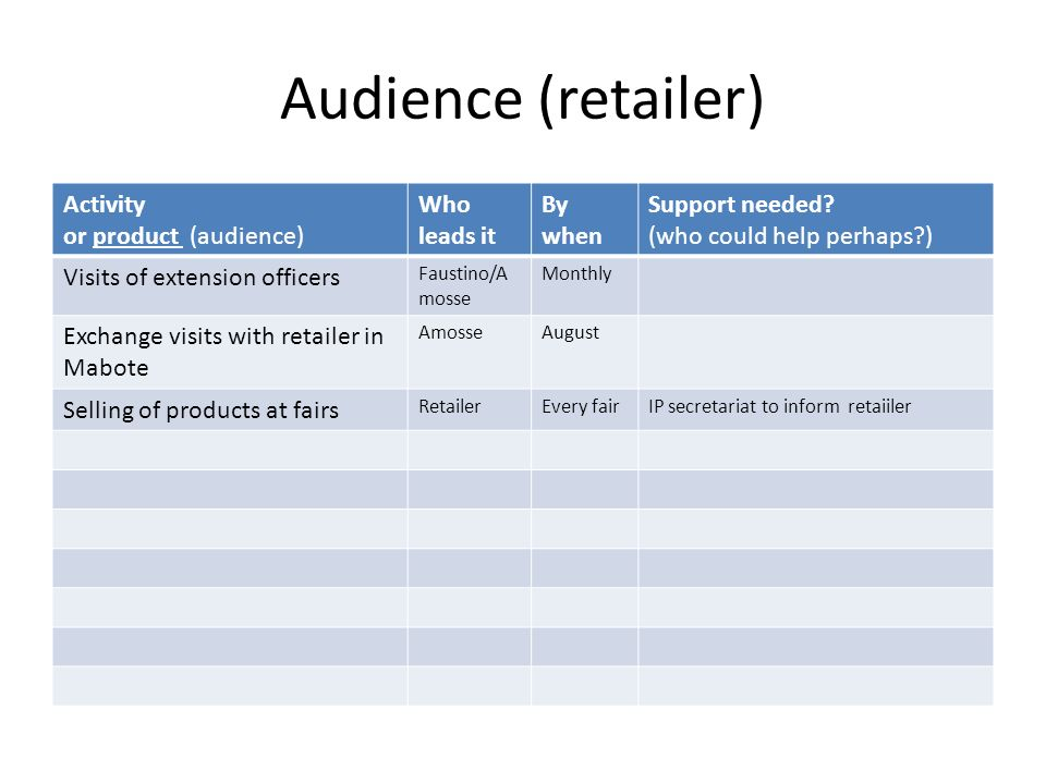 Audience (retailer) Activity or product (audience) Who leads it By when Support needed.