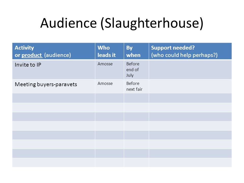Audience (Slaughterhouse) Activity or product (audience) Who leads it By when Support needed.
