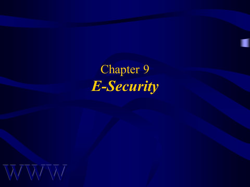 Chapter 9 E-Security