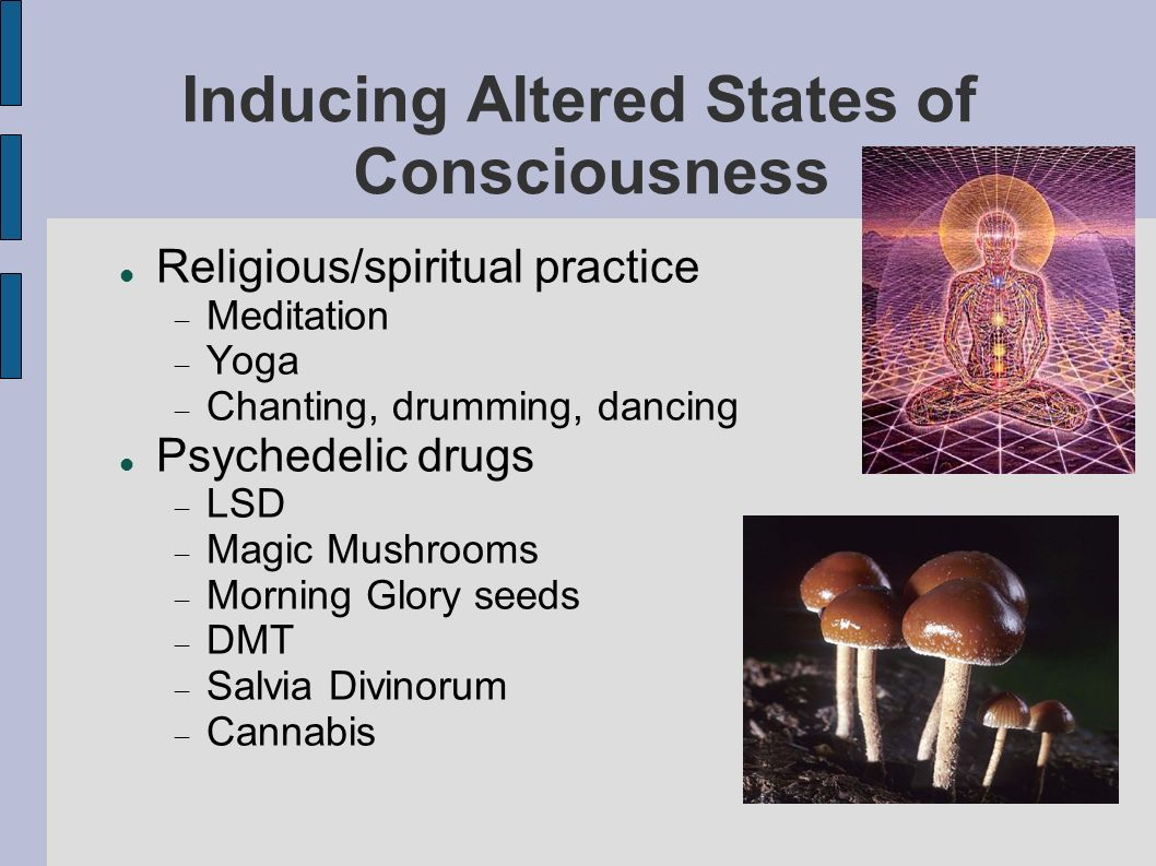Inducing Altered States of Consciousness Religious/spiritual practice Meditation Yoga Chanting, drumming, dancing Psychedelic drugs LSD Magic Mushrooms Morning Glory seeds DMT Salvia Divinorum Cannabis