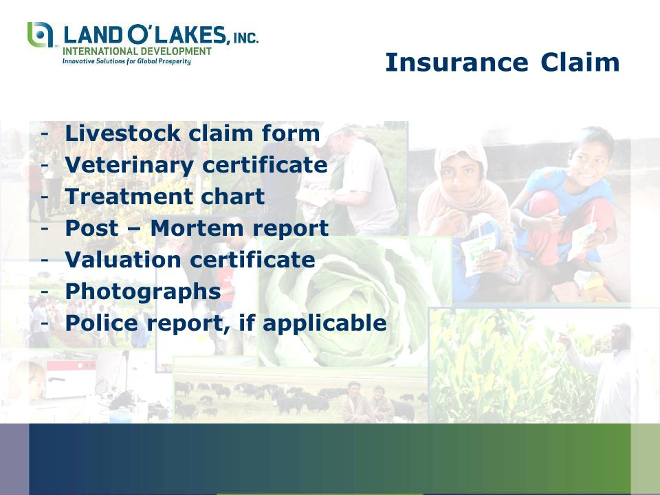 Insurance Claim -Livestock claim form -Veterinary certificate -Treatment chart -Post – Mortem report -Valuation certificate -Photographs -Police report, if applicable