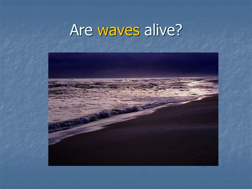 Are waves alive