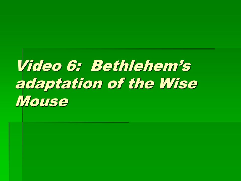 Video 6: Bethlehems adaptation of the Wise Mouse