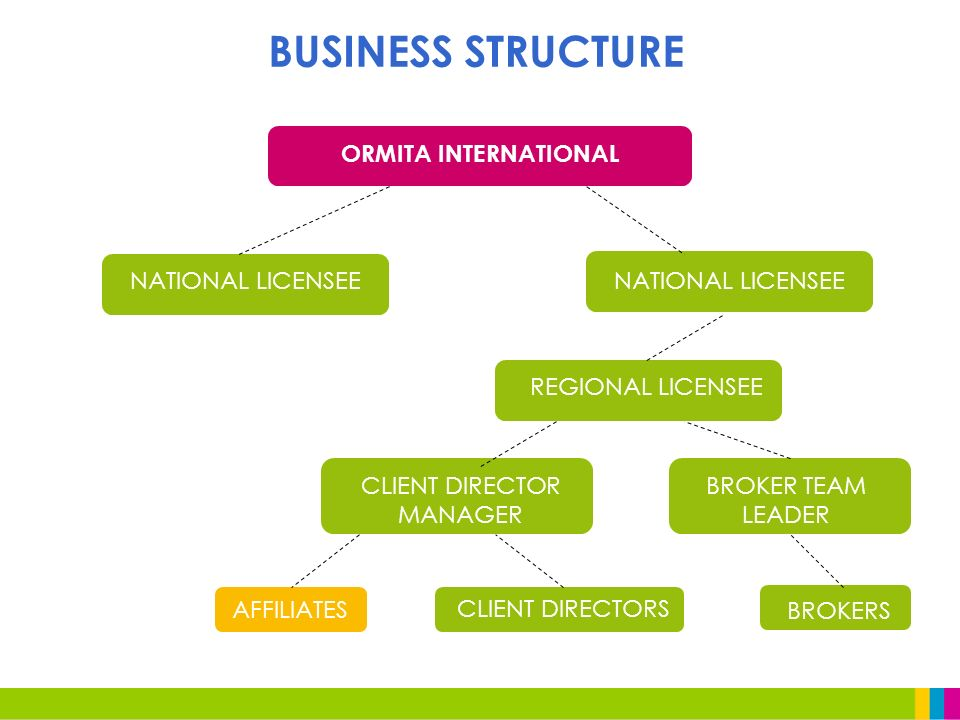BUSINESS STRUCTURE ORMITA INTERNATIONAL NATIONAL LICENSEE REGIONAL LICENSEE AFFILIATES CLIENT DIRECTORS CLIENT DIRECTOR MANAGER BROKER TEAM LEADER BROKERS