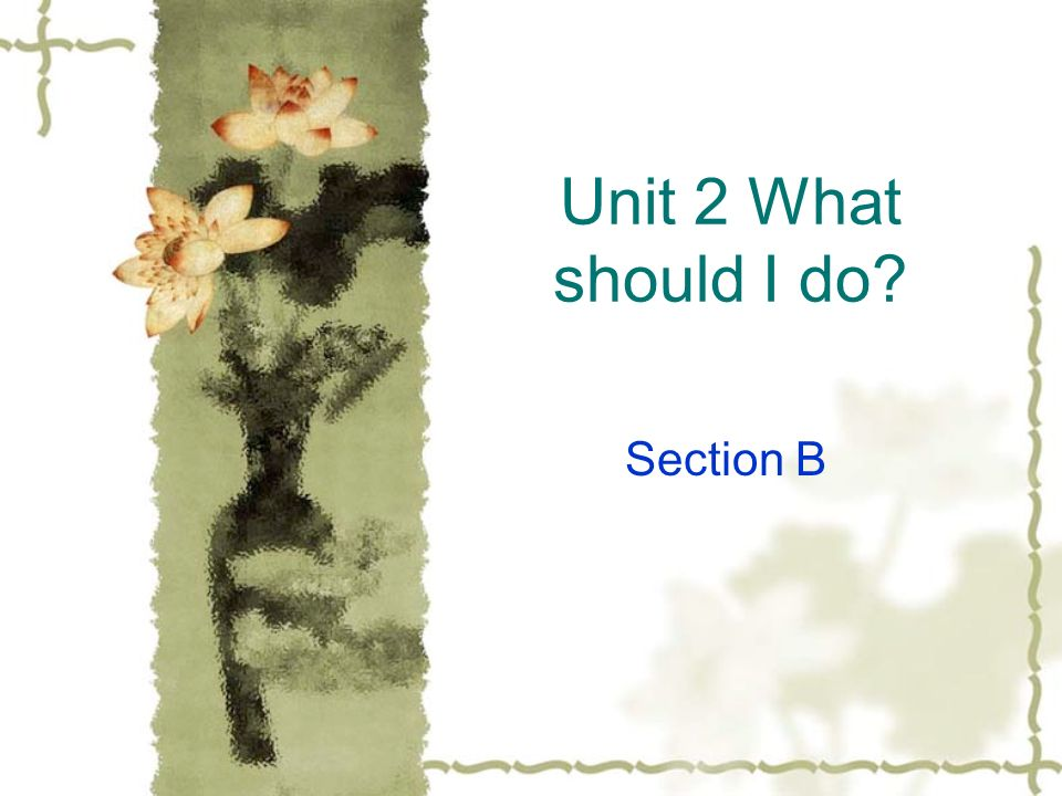 Unit 2 What should I do Section B