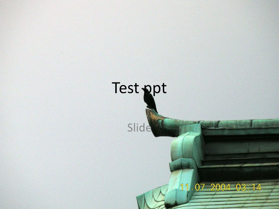 Test ppt Slide