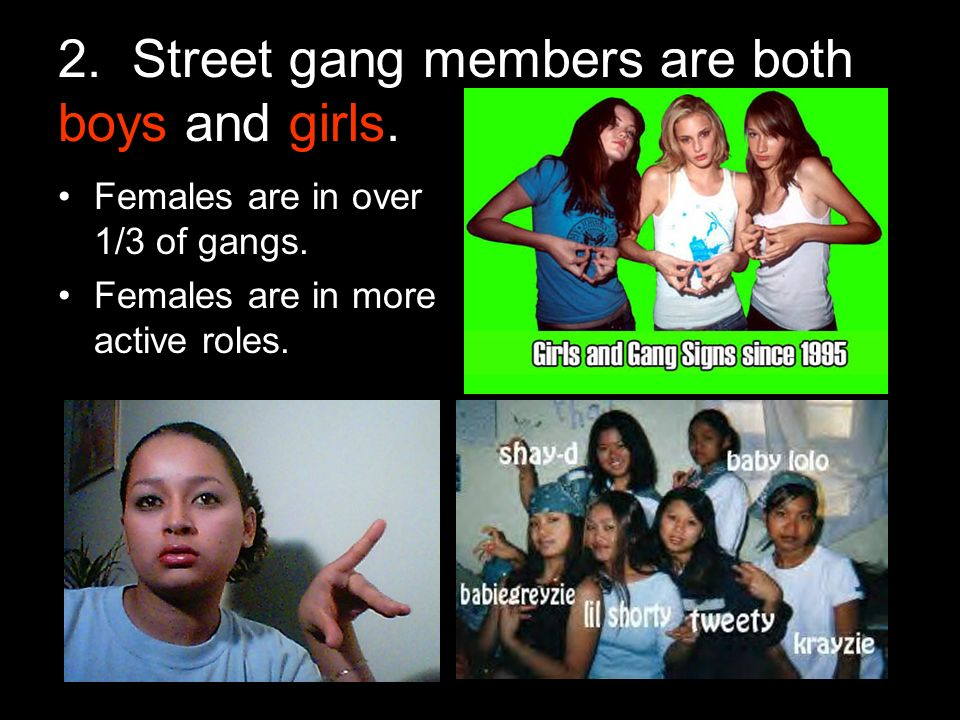 2. Street gang members are both boys and girls. Females are in over 1/3 of gangs.