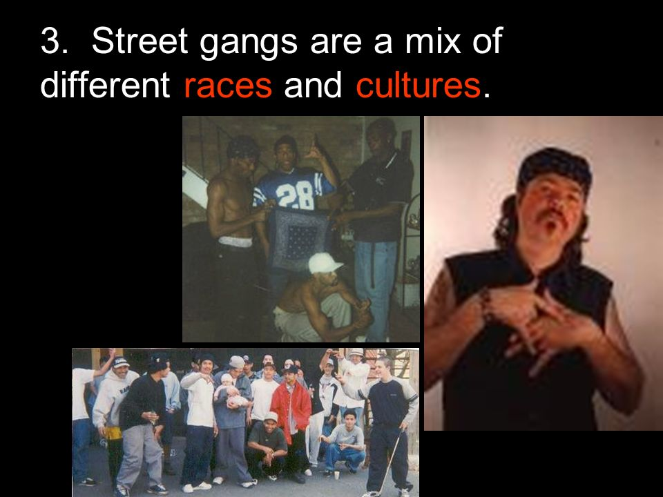 3. Street gangs are a mix of different races and cultures.