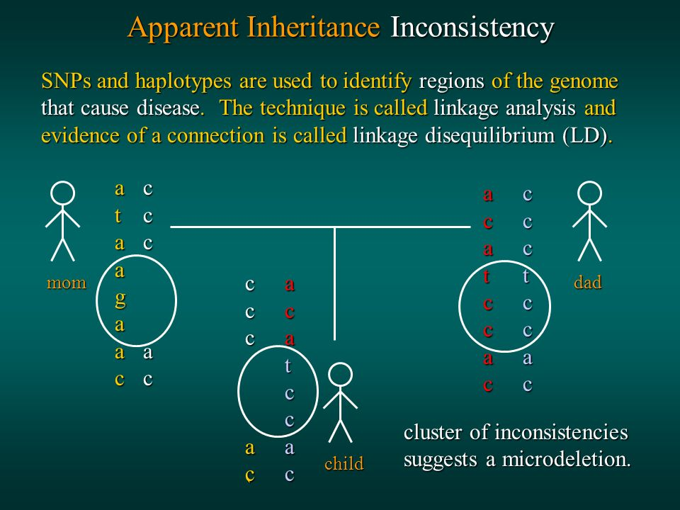 Apparent Inheritance Inconsistency SNPs and haplotypes are used to identify regions of the genome that cause disease.