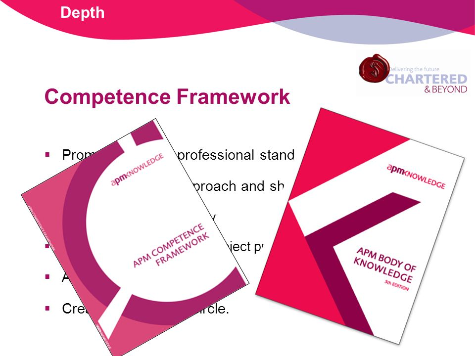 Competence Framework Promotes agreed professional standards Creates common approach and shared language Facilitates transferability Optimises deployment of project professionals Avoids re-inventing wheel Creation of virtuous circle.