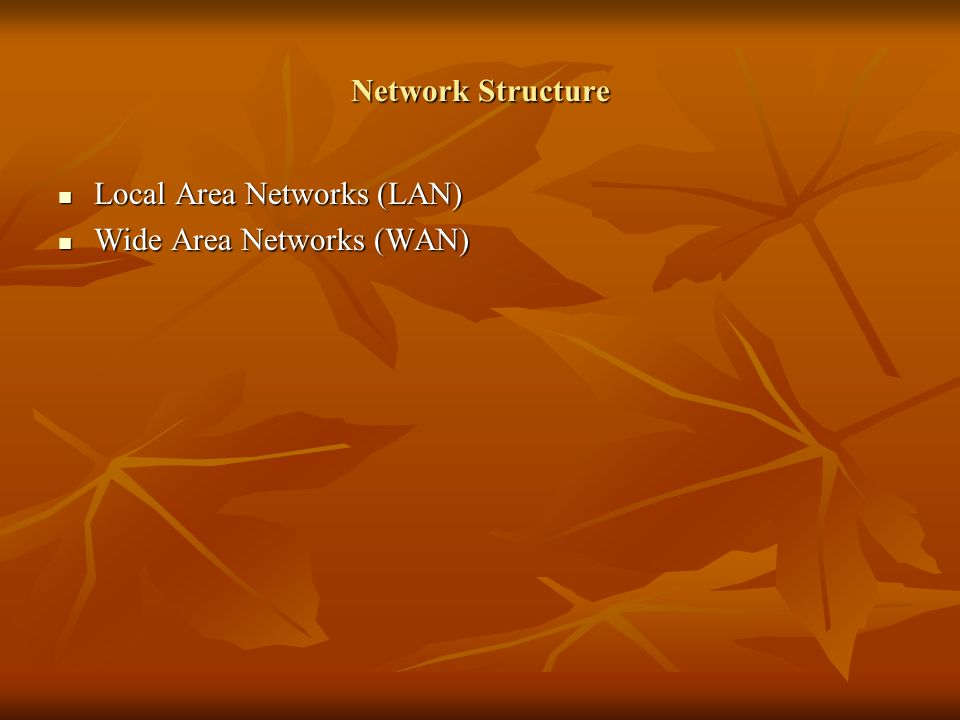 Network Structure Local Area Networks (LAN) Local Area Networks (LAN) Wide Area Networks (WAN) Wide Area Networks (WAN)