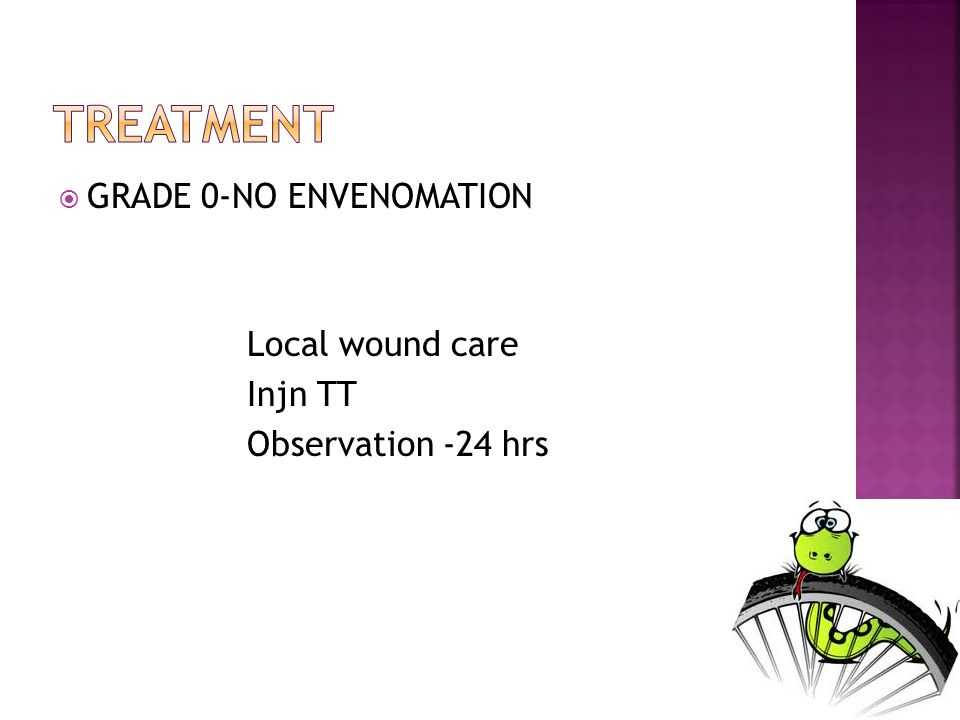 GRADE 0-NO ENVENOMATION Local wound care Injn TT Observation -24 hrs