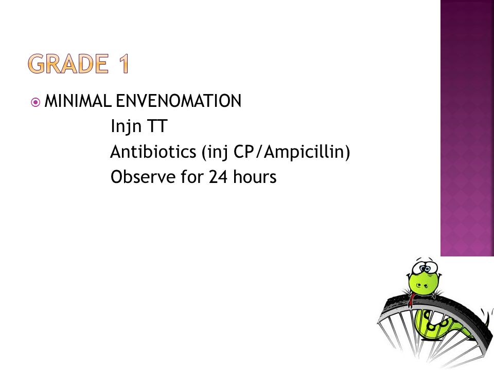 MINIMAL ENVENOMATION Injn TT Antibiotics (inj CP/Ampicillin) Observe for 24 hours