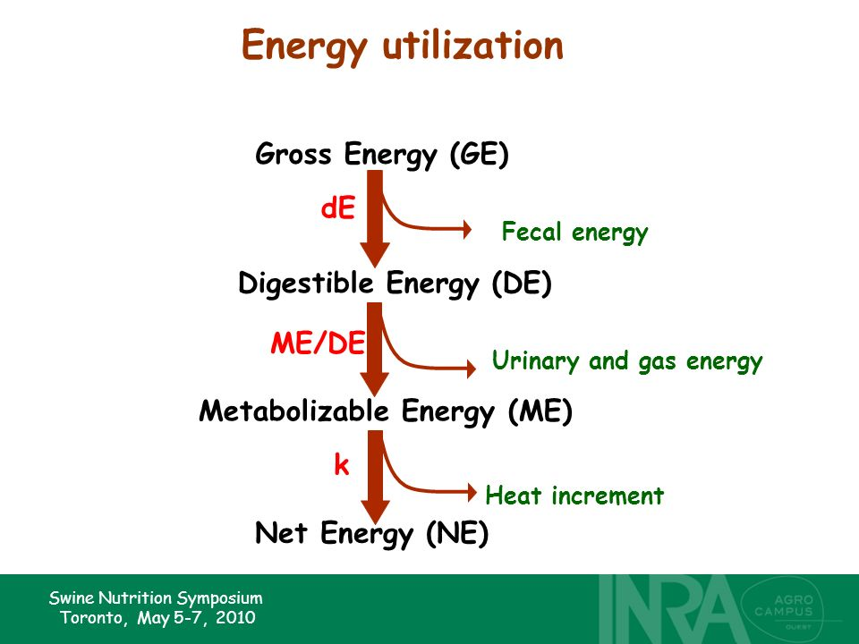 Swine Nutrition Symposium Toronto, May 5-7, 2010 Digestible Energy (DE) Metabolizable Energy (ME) Gross Energy (GE) Fecal energy Urinary and gas energy Net Energy (NE) Heat increment dE ME/DE k Energy utilization