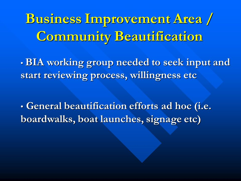 Business Improvement Area / Community Beautification BIA working group needed to seek input and start reviewing process, willingness etc BIA working group needed to seek input and start reviewing process, willingness etc General beautification efforts ad hoc (i.e.