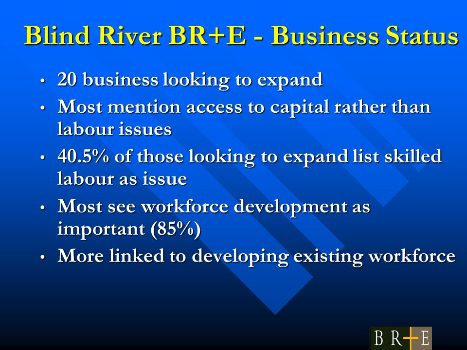 Blind River BR+E - Business Status 20 business looking to expand 20 business looking to expand Most mention access to capital rather than labour issues Most mention access to capital rather than labour issues 40.5% of those looking to expand list skilled labour as issue 40.5% of those looking to expand list skilled labour as issue Most see workforce development as important (85%) Most see workforce development as important (85%) More linked to developing existing workforce More linked to developing existing workforce