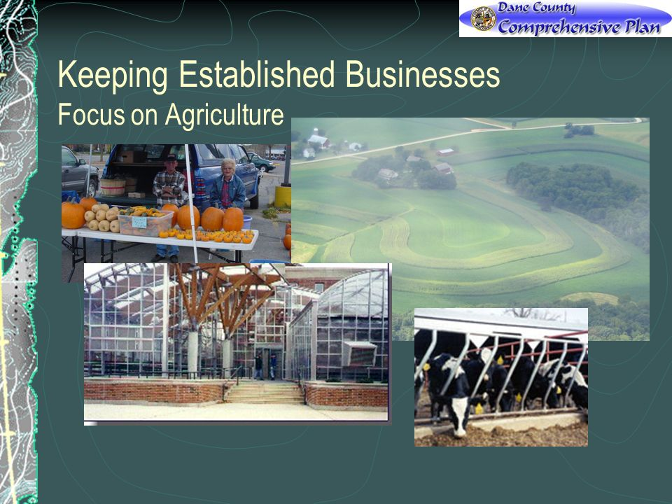 Keeping Established Businesses Focus on Agriculture