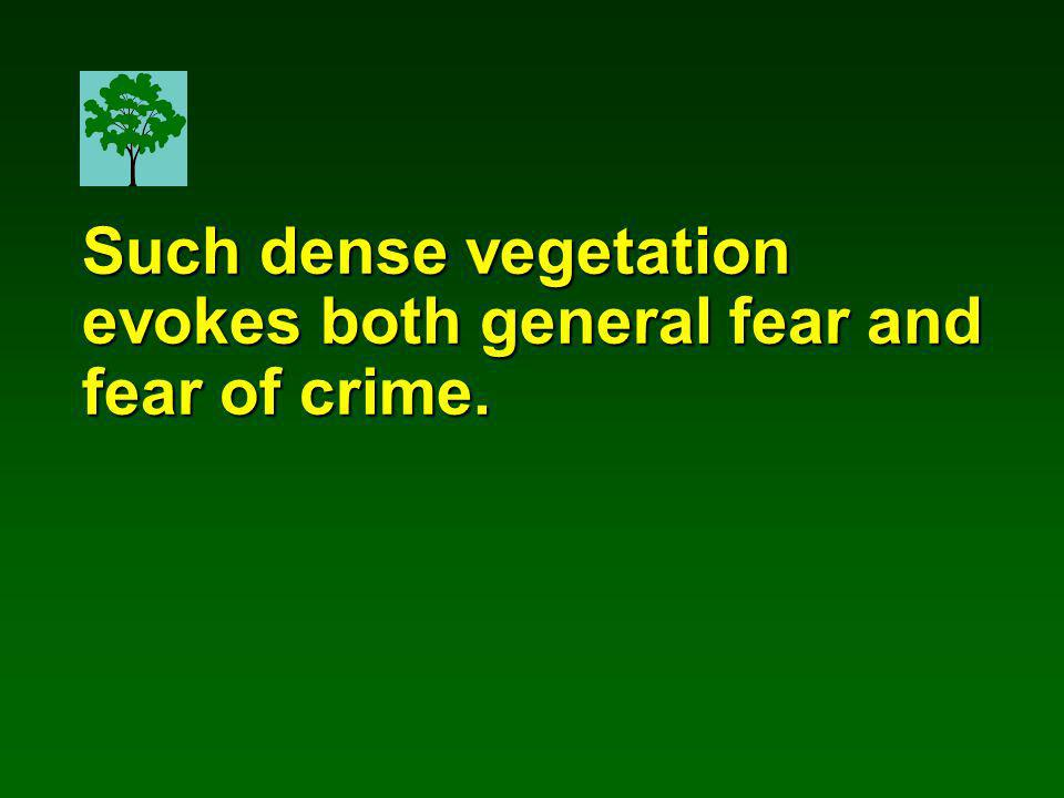 Such dense vegetation evokes both general fear and fear of crime.