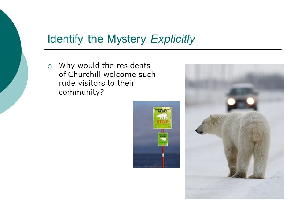 Identify the Mystery Explicitly Why would the residents of Churchill welcome such rude visitors to their community