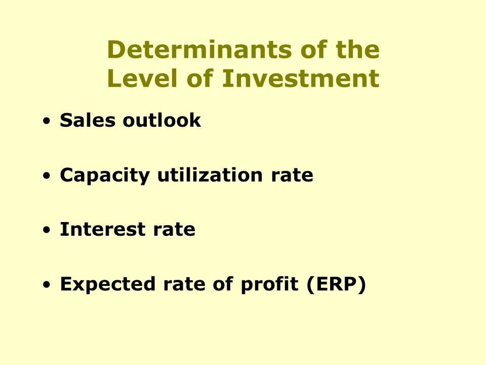 Determinants of the Level of Investment Sales outlook Capacity utilization rate Interest rate Expected rate of profit (ERP)