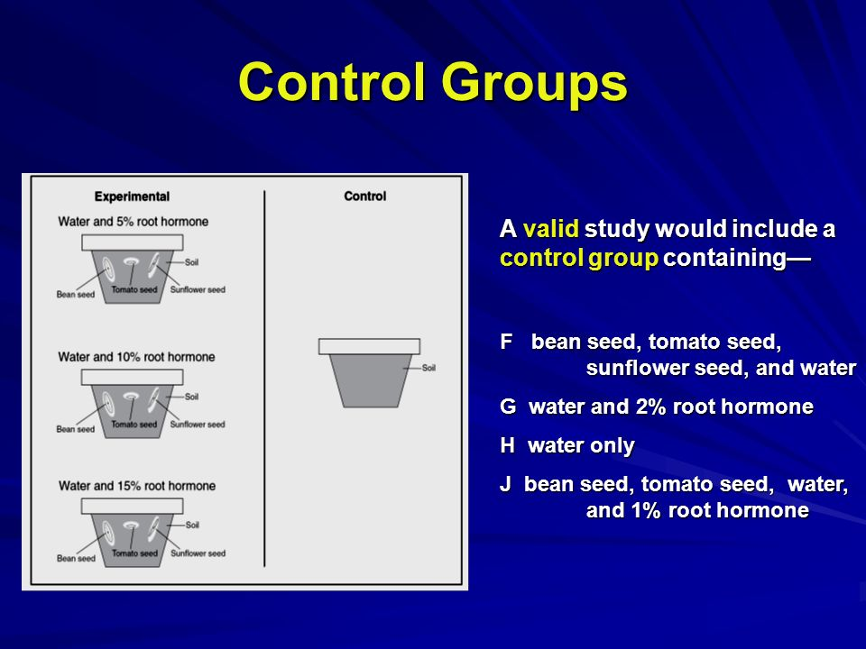 Control Groups A valid study would include a control group containing F bean seed, tomato seed, sunflower seed, and water G water and 2% root hormone H water only J bean seed, tomato seed, water, and 1% root hormone