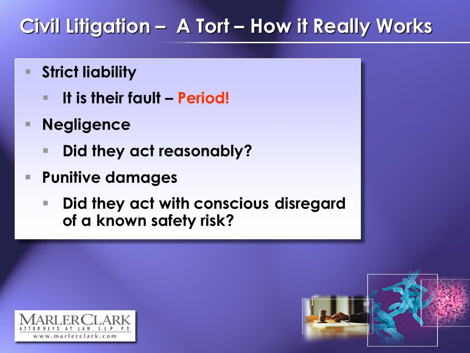 Civil Litigation – A Tort – How it Really Works Strict liability It is their fault – Period.