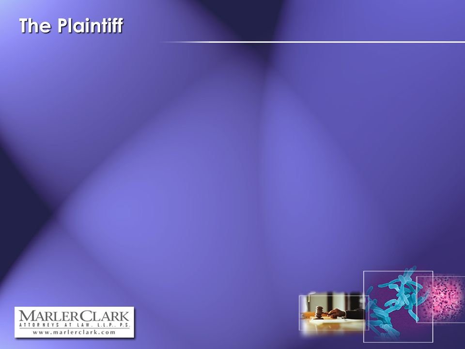 The Plaintiff