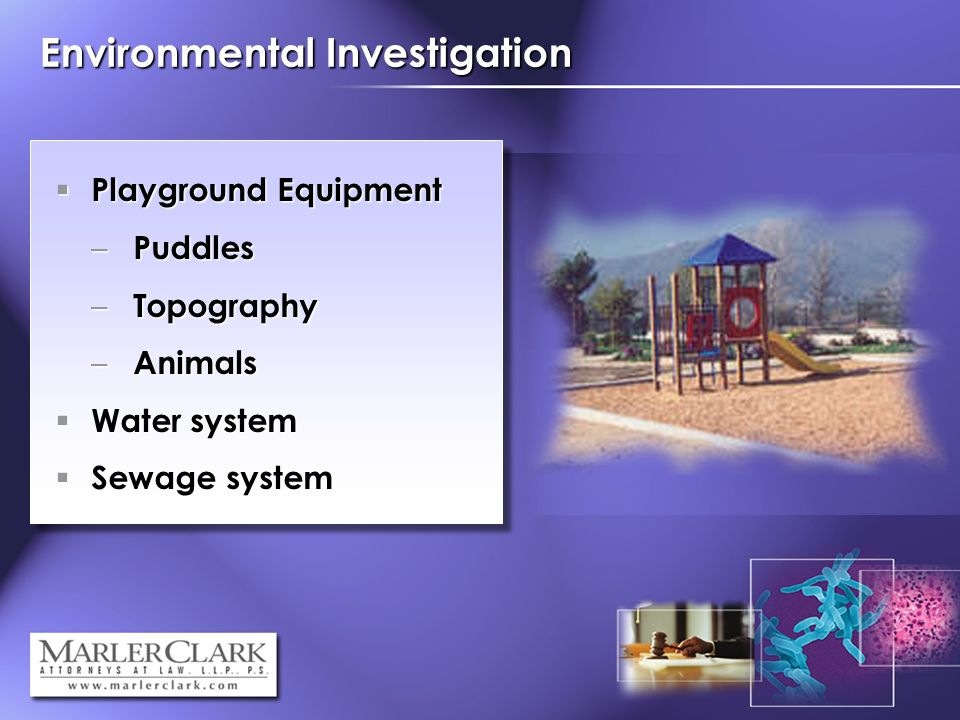 Environmental Investigation Playground Equipment Playground Equipment – Puddles – Topography – Animals Water system Water system Sewage system Sewage system