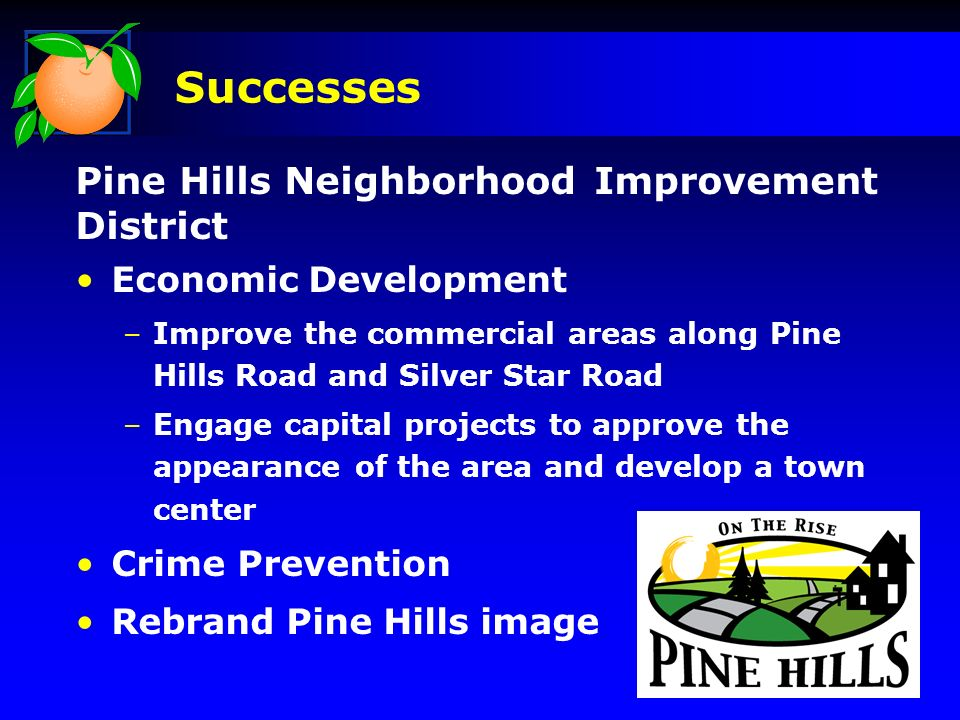 Pine Hills Neighborhood Improvement District Economic Development –Improve the commercial areas along Pine Hills Road and Silver Star Road –Engage capital projects to approve the appearance of the area and develop a town center Crime Prevention Rebrand Pine Hills image Successes