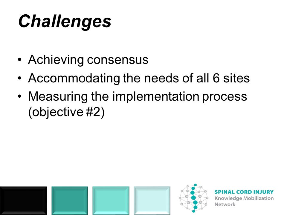 Challenges Achieving consensus Accommodating the needs of all 6 sites Measuring the implementation process (objective #2)