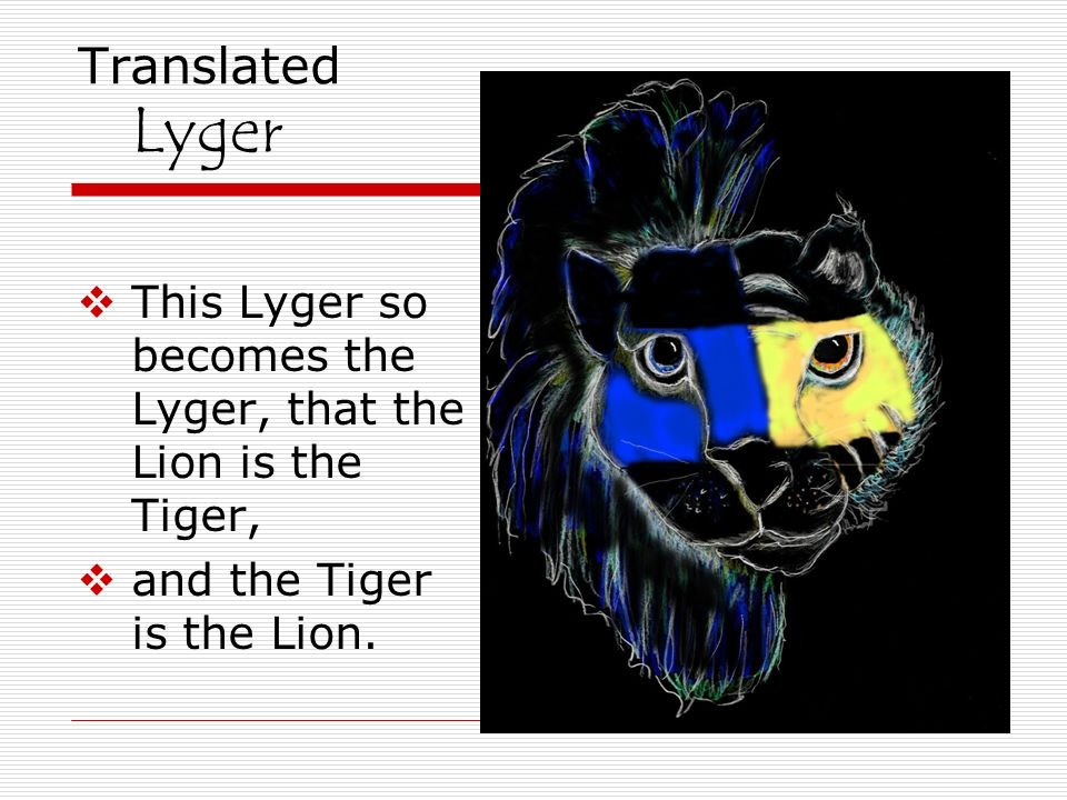 Translated Lyger This Lyger so becomes the Lyger, that the Lion is the Tiger, and the Tiger is the Lion.