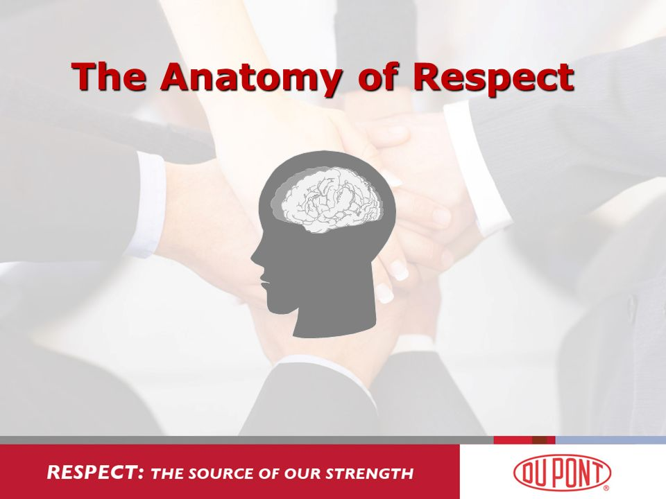 The Anatomy of Respect