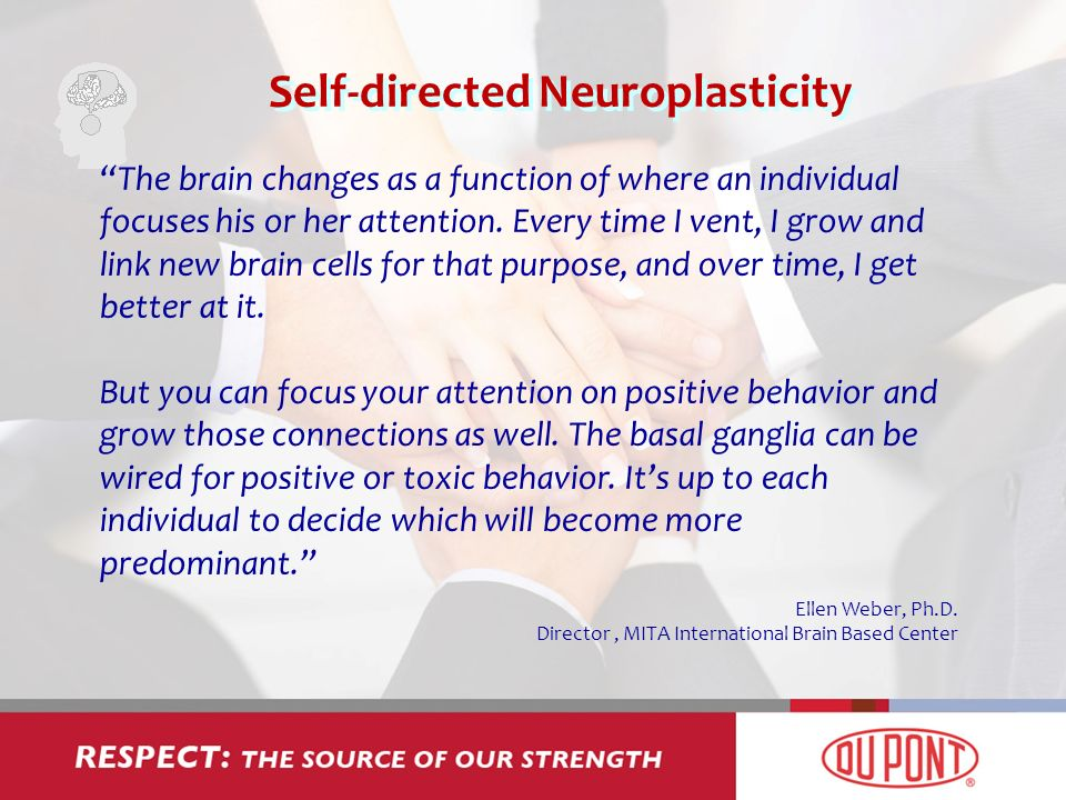Self-directed Neuroplasticity The brain changes as a function of where an individual focuses his or her attention.