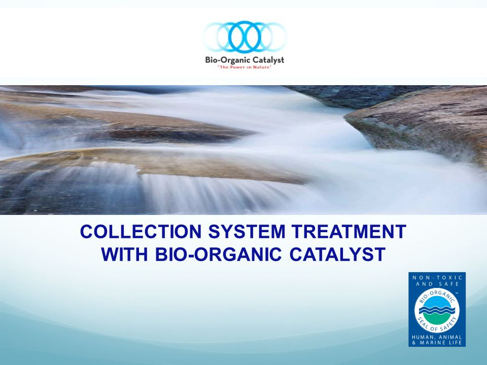 COLLECTION SYSTEM TREATMENT WITH BIO-ORGANIC CATALYST