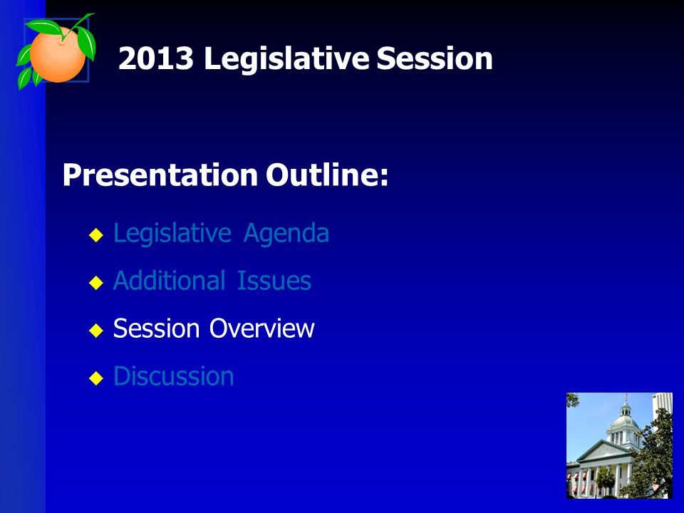 Presentation Outline: Legislative Agenda Additional Issues Session Overview Discussion 2013 Legislative Session
